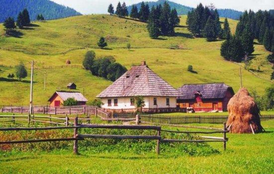 18_07_2008_agricultura-ecologica-sau-intoarcerea-la-natura_6900
